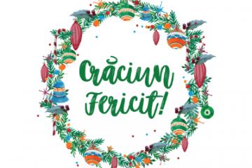Atelier practic în familie – poveste de Crăciun 6