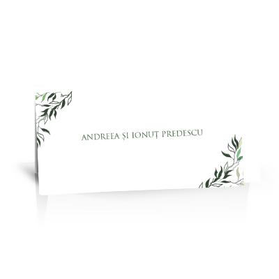 Plic de bani pentru nunta cu crengute verzi 1