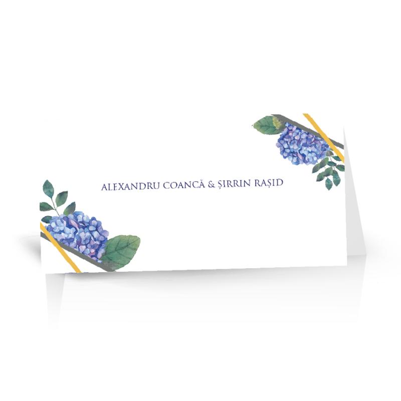 Plic de bani cu eucalipt si ortensii albastre 1